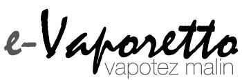 e-vaporetto.com